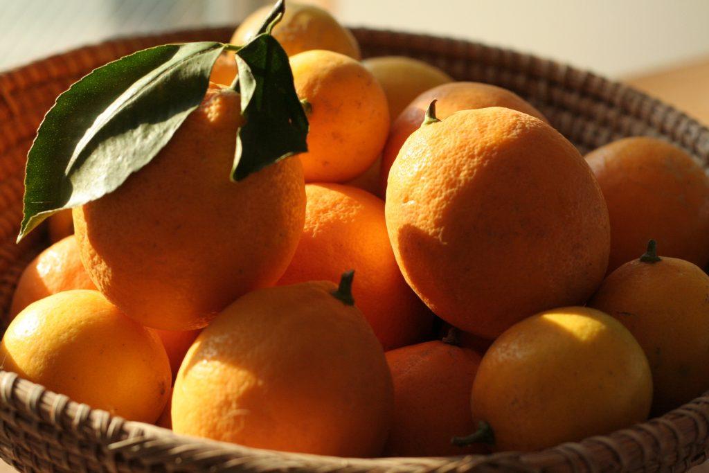 lemon blog
